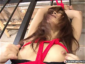 bound asian nymph got her pussy played by horny freaks